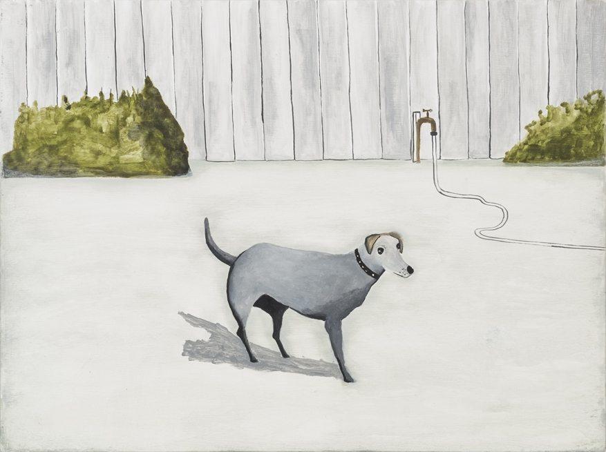 Backyard Scene, Domestic Dog with 3 Legs, 2013