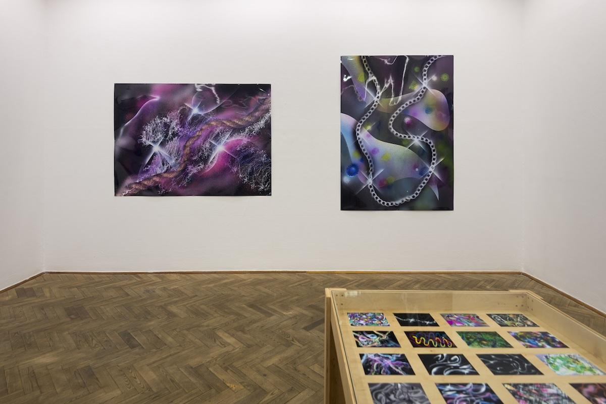 Exhibition view of Slawomir Pawszak, Laniakea at Galerie Foksal, 2018