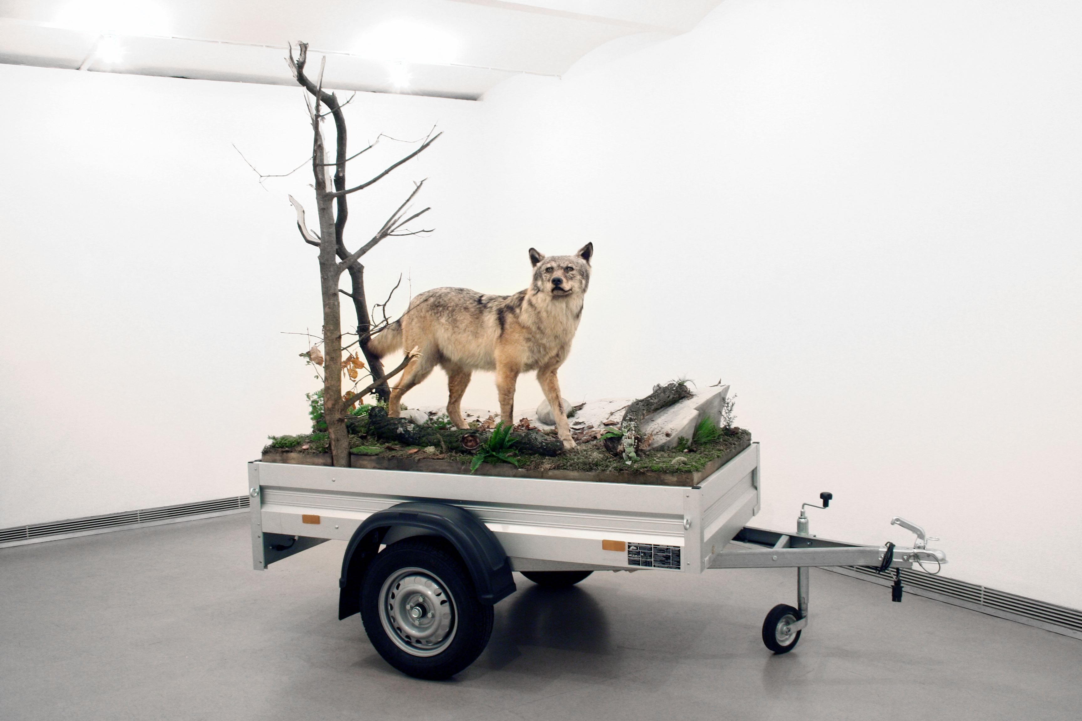 Mark Dion, Mobile Wilderness Unit - Wolf, 2006