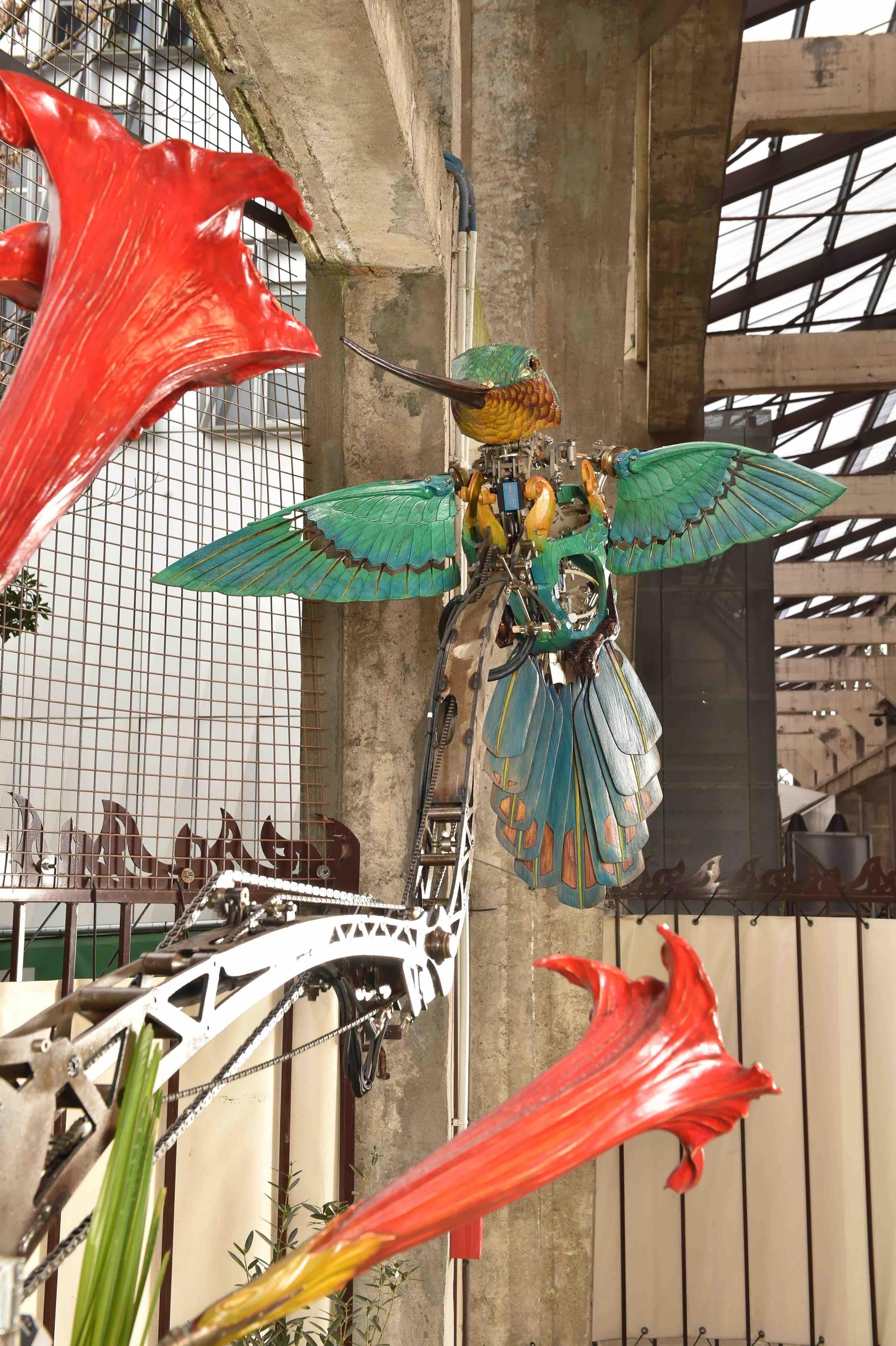 Hummingbirds at Machines de L'ÃŽle