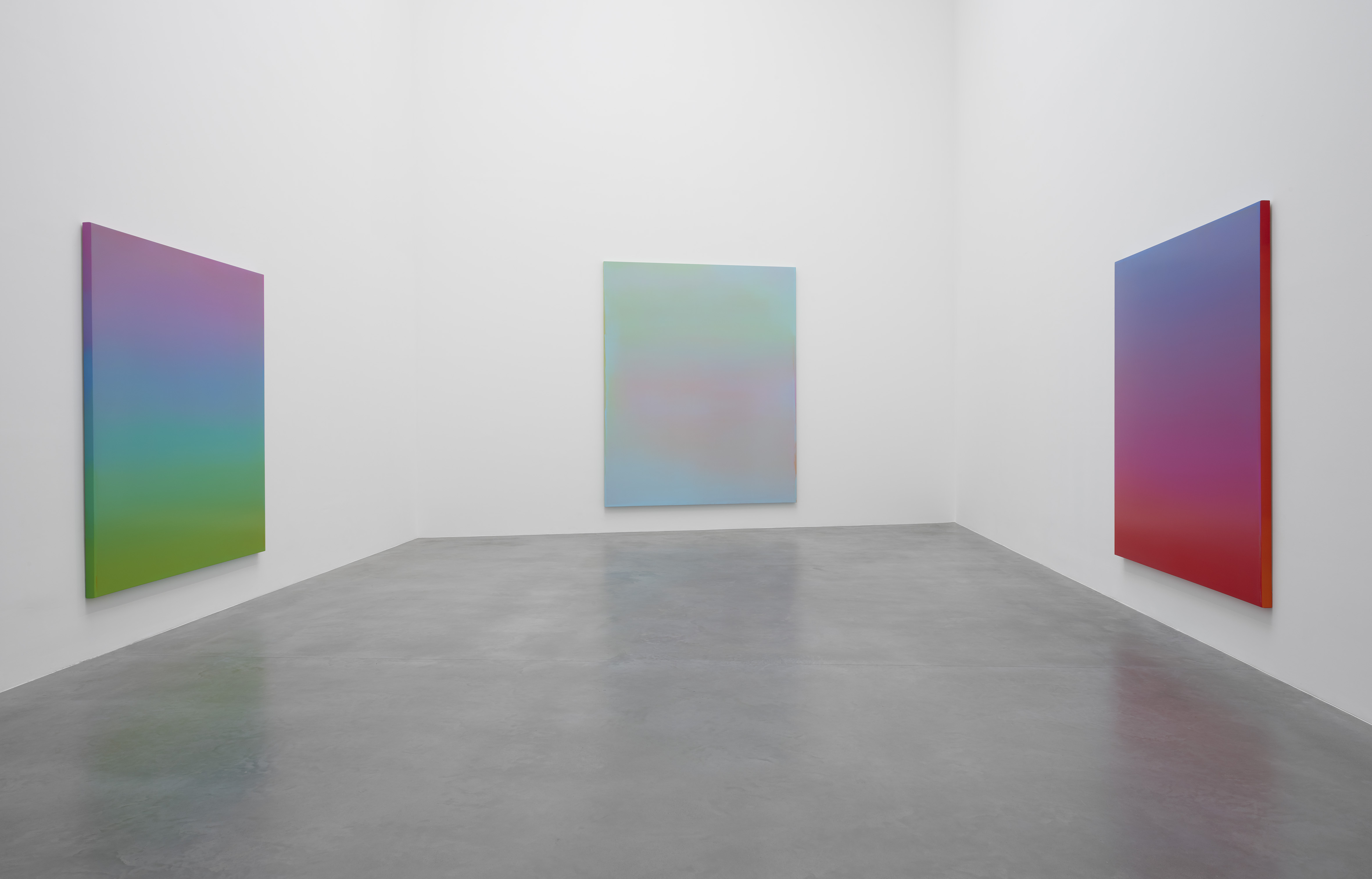 Installation view, True Colours, courtesy Newport Street Gallery