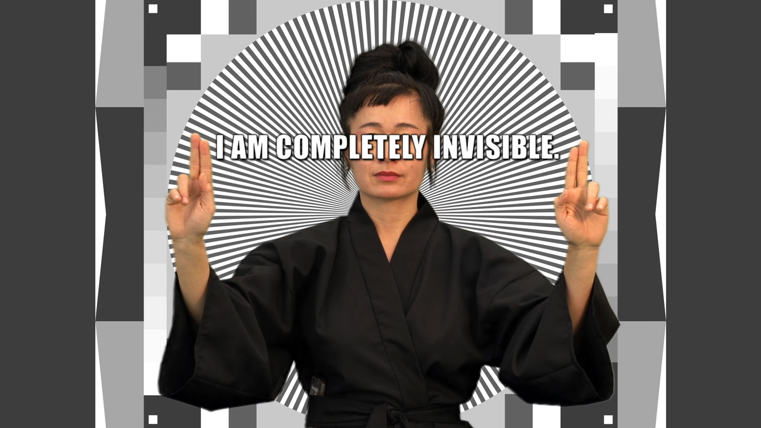 Hito Steyerl How Not to Be Seen: A Fucking Didactic Educational .MOV File