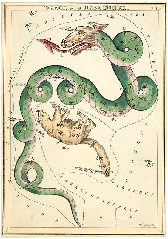 Draco from Urania's Mirror, or A View of the heavens by Jehoshaphat Aspin. Samuel Leigh: London, 1834. British Library, London.