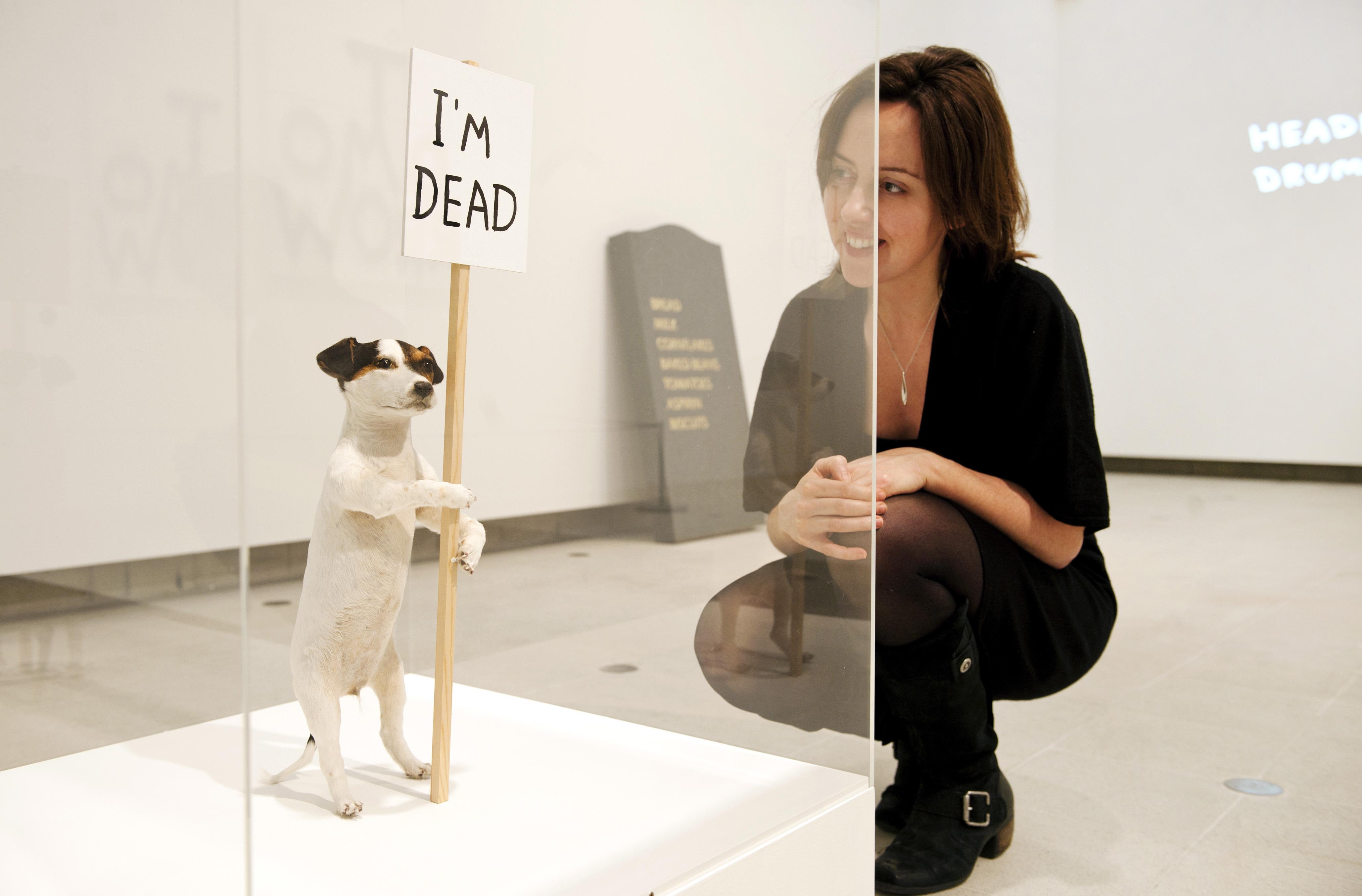 David Shrigley, I'm Dead 2010 at Brain Activity exhibition at Hayward Gallery, Southbank Centre, 2012. Photo by Linda Nylind.