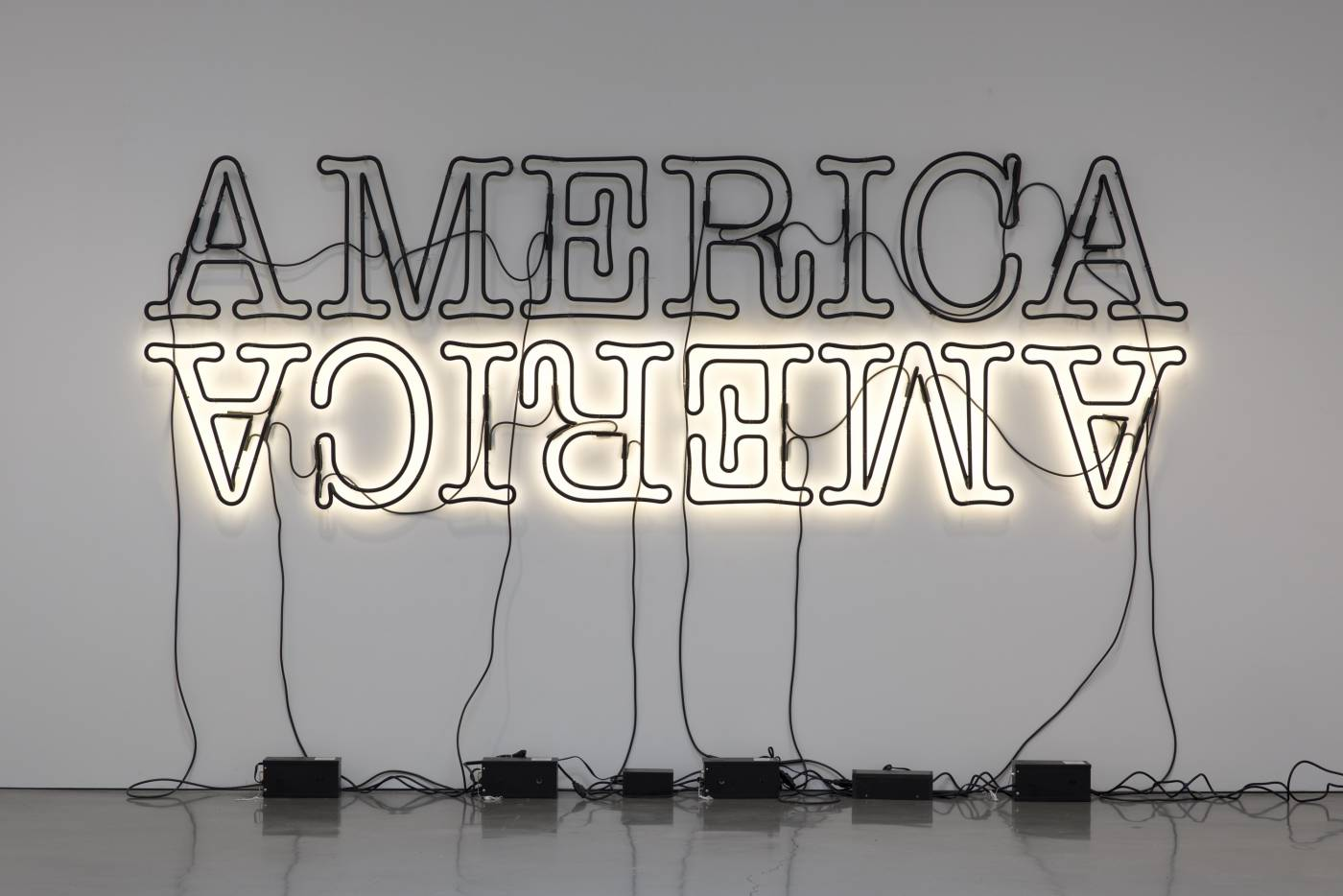 Glenn Ligon, Double America 2, © Glenn Ligon; Image courtesy of the artist, Luhring Augustine, New York, Regen Projects, Los Angeles, and Thomas Dane Gallery, London.