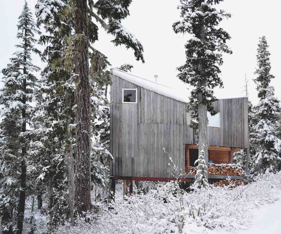 Scott & Scott Architects: Alpine Cabin, Vancouver Island, Canada. Photograph © 2019 Scott & Scott Architects