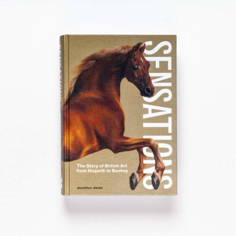 Sensations by Jonathan Jones, cover