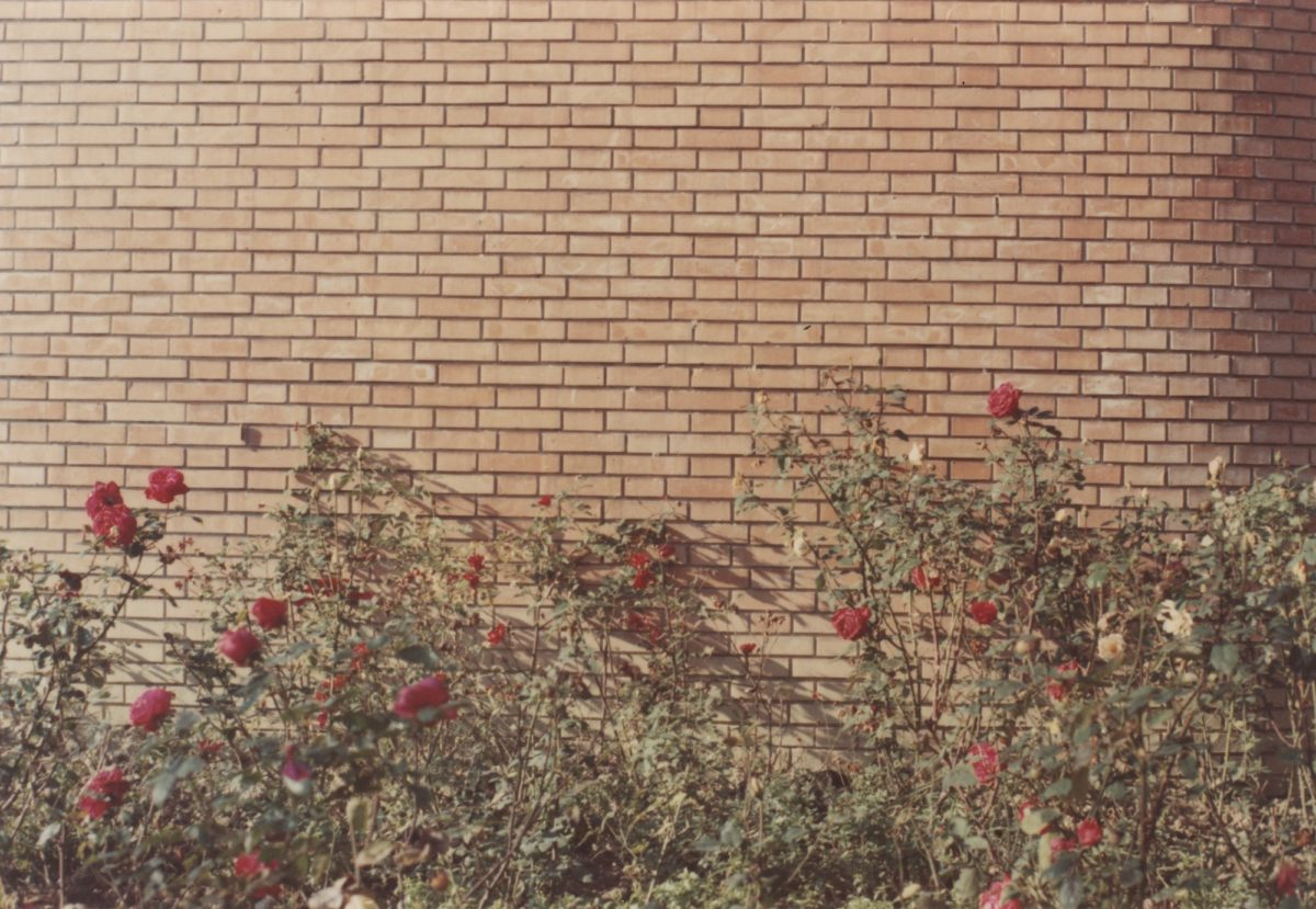 Luigi Ghirri, Modena, 1973 © Estate of Luigi Ghirri. Courtesy the Estate, Thomas Dane Gallery, and Matthew Marks Gallery
