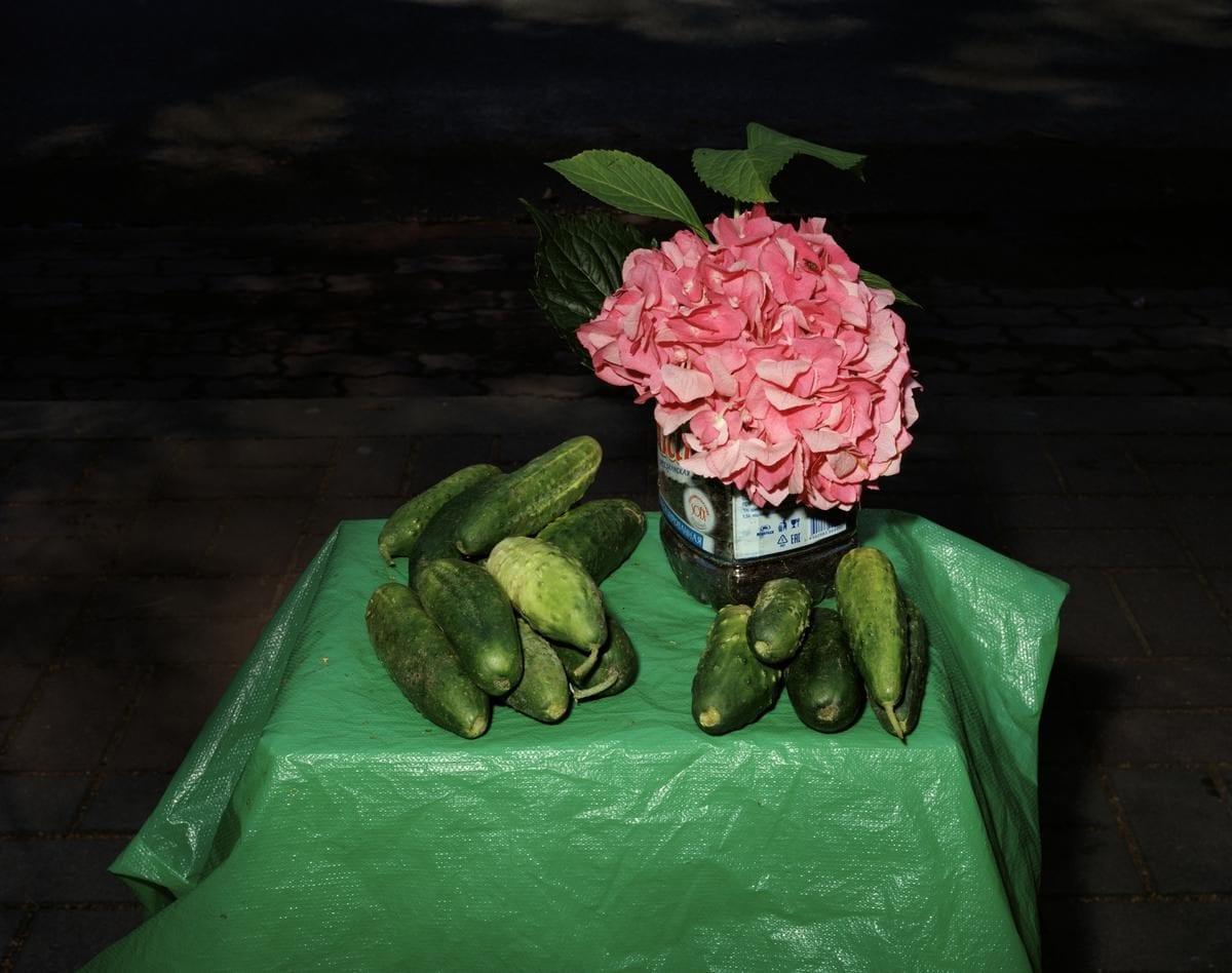 Lia Darjes, Stillleben mit Hortensie und Gurken, from the series Tempora Morte, 2016. Courtesy the artist and Robert Morat Galerie