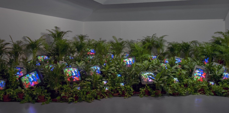 Nam June Paik, TV Garden 1974-1977 (2002).Courtesy Kunstsammlung Nordrhein-Westfalen, Dusseldorf