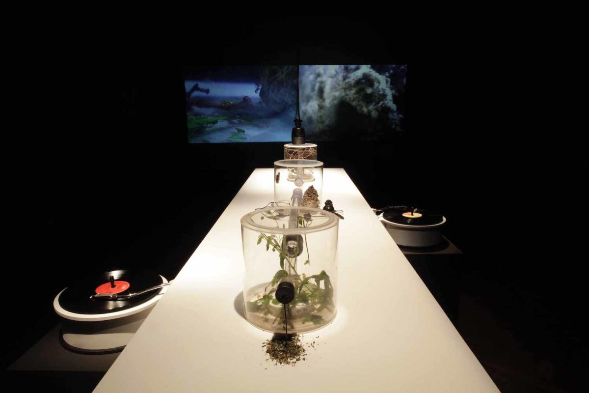 Kuai Shen, Ohm1gas, (2012). Image by Miha Fras. Installation view at
