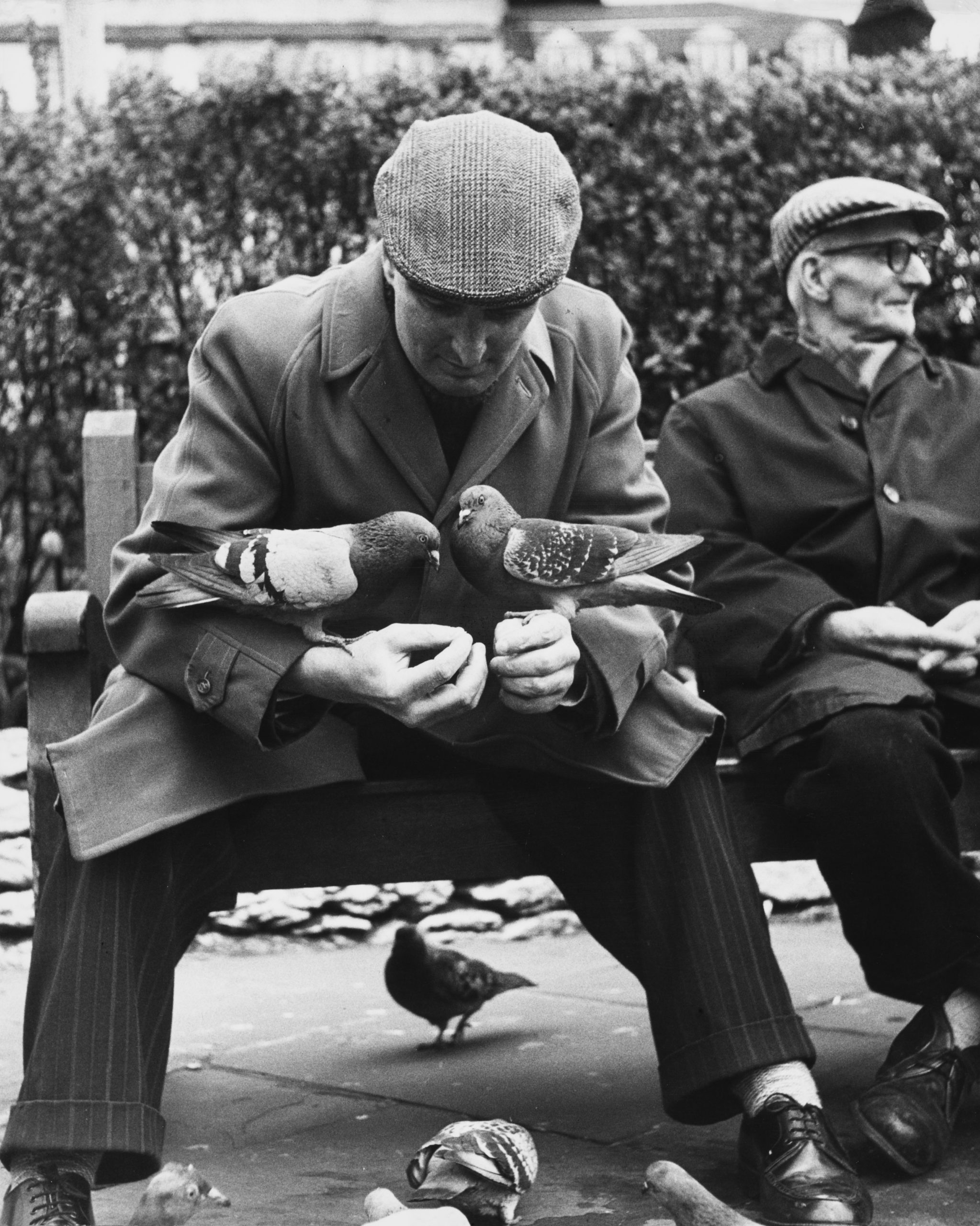 Shirley Baker, Manchester (Man with Pigeons), 1967